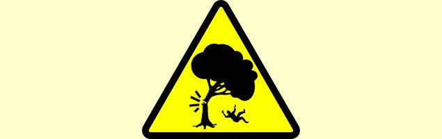 Beware of falling limbs!