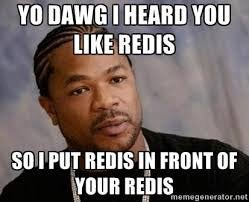 YO DAWG I HEARD YOU LIKE REDIS SO I PUT REDIS IN FRONT OF YOUR REDIS