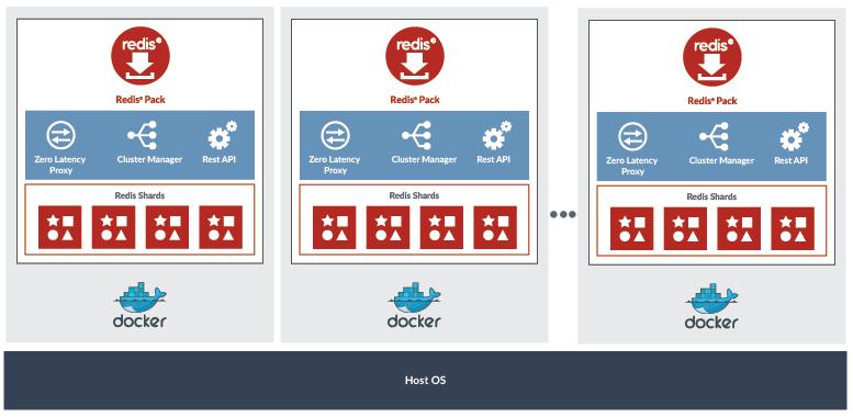 Docker Redis Enterprise Pack Cluster