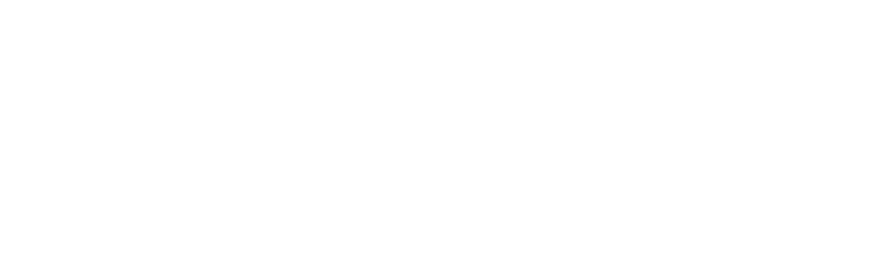 Etermax white logo