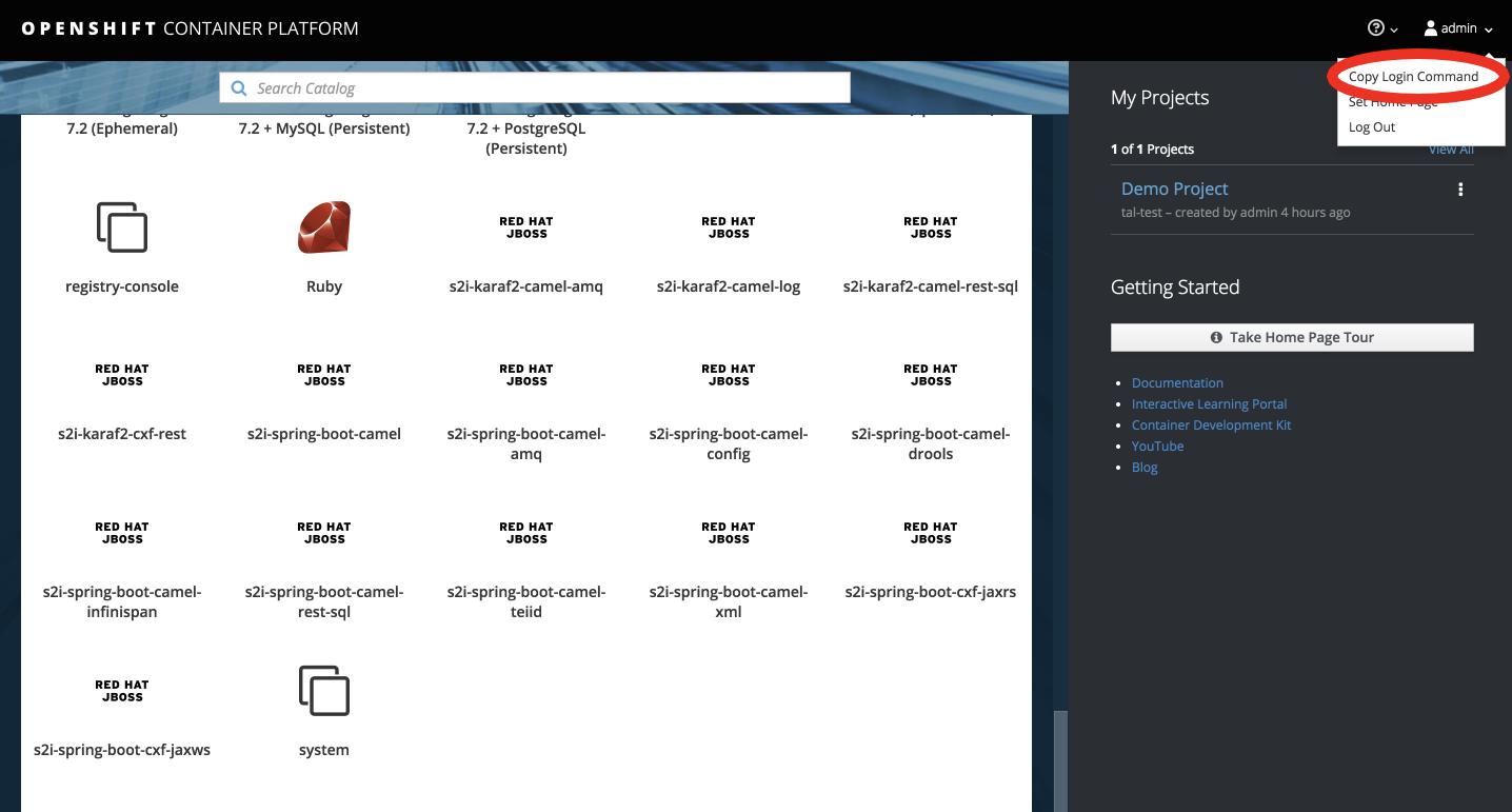 "OpenShift ""copy login"" screen"