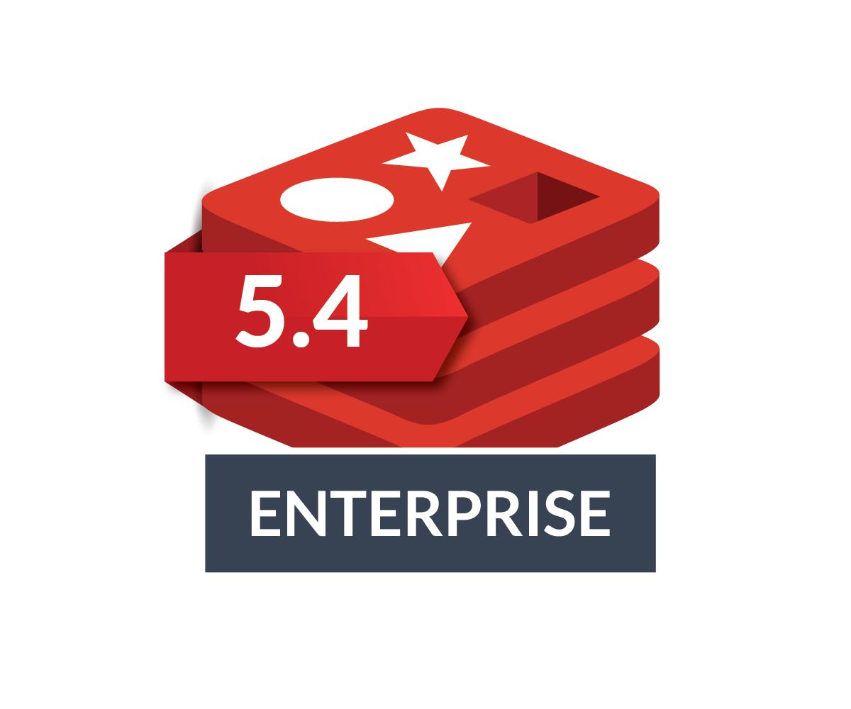 Redis Enterprise 5.4