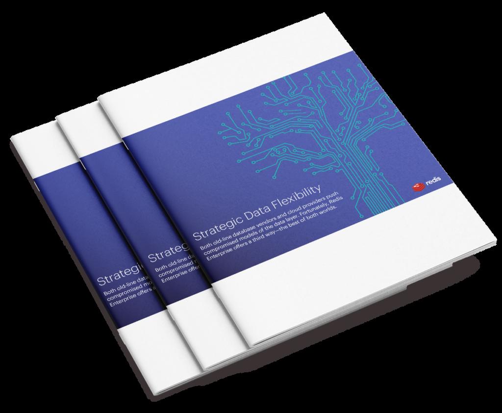 Strategic Data Flexibility cover