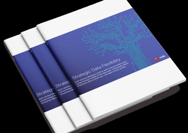 Strategic Data Flexibility